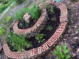 2nd year herb spiral