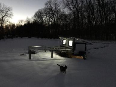 Winter Night Light